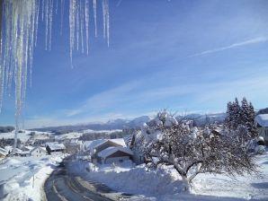 Ferienwohnung Allgäu auf Hof-Bergsicht