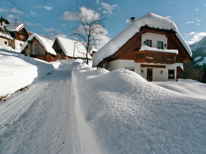 Alpenruh