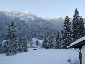 Chalet Suttenhütte