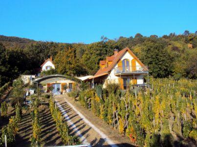 Weißenstein - Traumblickhaus
