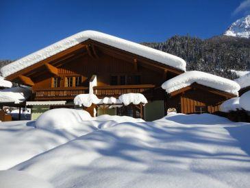 Ferienhaus Kleinarl Ski amade