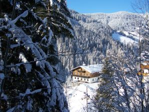 Ski lodge cottage in the mountains-Grubhoehe Wagrain