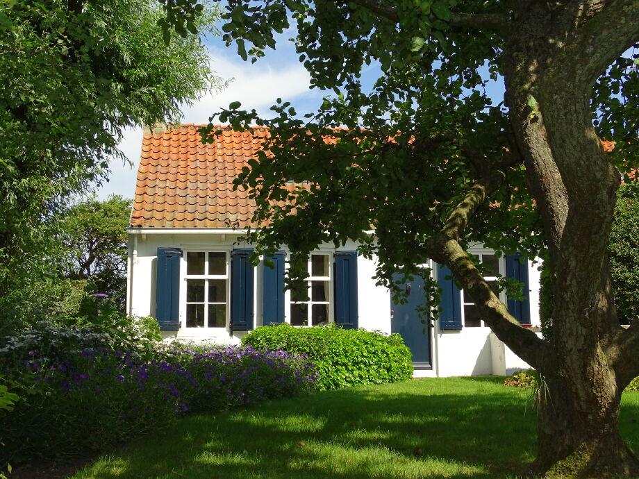 Außenaufnahme Ferienhaus Domburg - ZE415