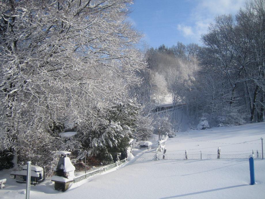 Unser Garten im Schnee
