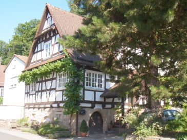 Holiday apartment Pfaelzerleben (Palatinate experience)