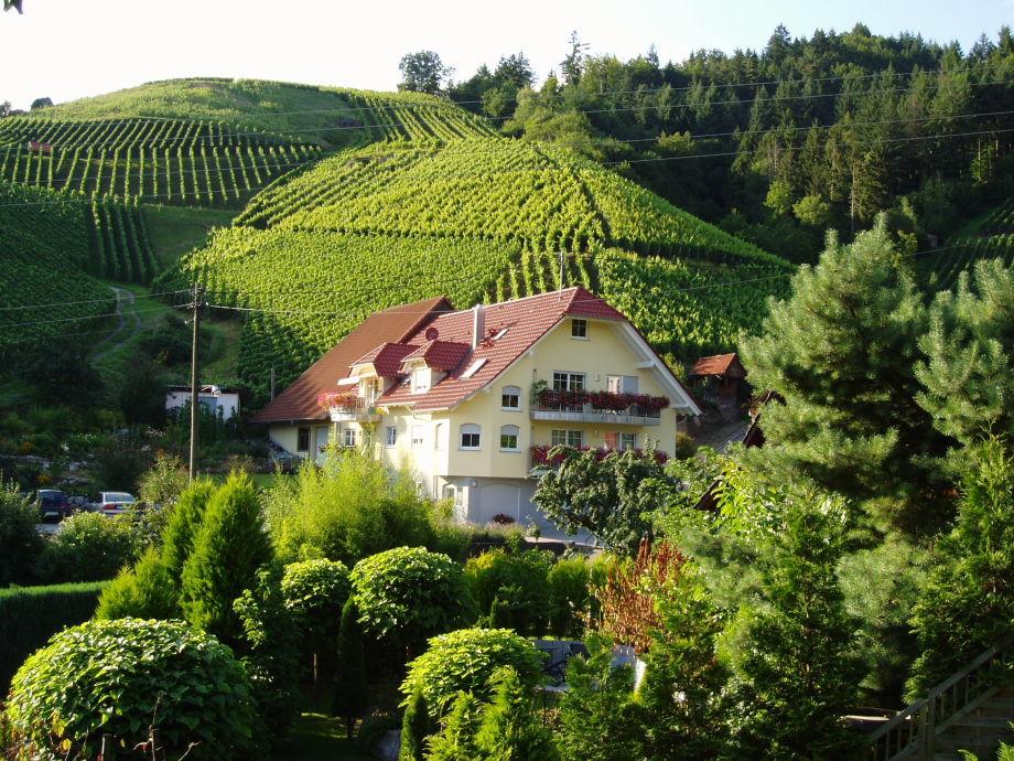 Ferienhof Mayer umgeben von Weinbergen