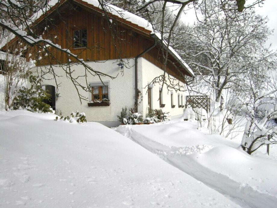 Ferienhaus Natur im Winter