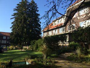 Ferienwohnung Ferien-Suite Braunlage