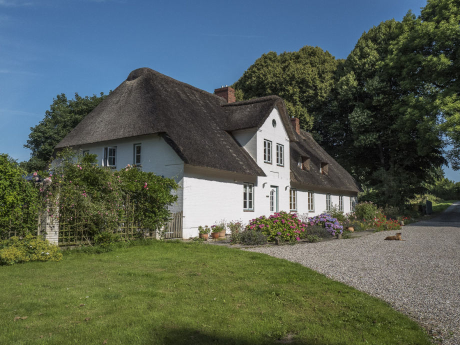 The thatched country house