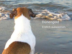 Ferienwohnung Dünengold