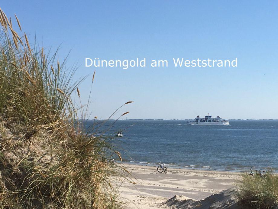 Herzlich Willkommen auf Norderney!