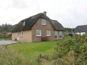 Ferienhaus Anna Grethes Hus (C396)