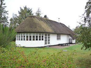 Ferienhaus Reethaus Nørhede (C090)