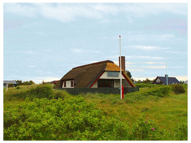 Ferienhaus Reetdach hygge Haus (D018)