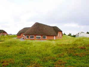 Ferienhaus Sandagers Poolhus (D241)