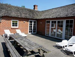Ferienhaus Nedergaards Poolhus (D297)