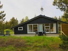 Ferienhaus Grævlinge Hus (E341)