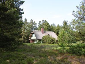 Ferienhaus Lisbeths Familiehus (E68)
