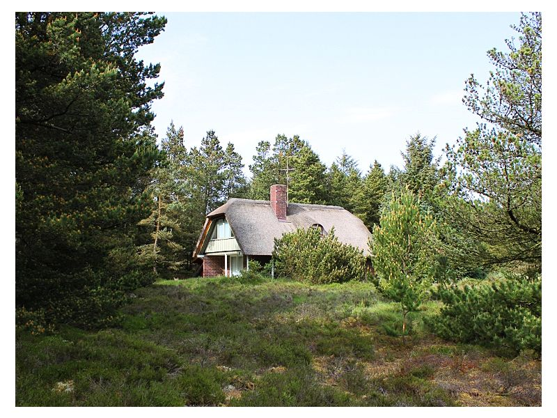 Ferienhaus Lisbeths Familiehus (E016)