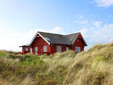 Ferienhaus Lakolk Oldtidshus (F041)