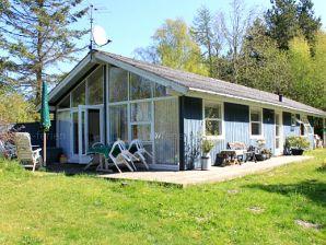 Ferienhaus Nellemanns Hus (H021)