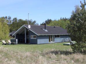 Ferienhaus Ingers Hus (H312)