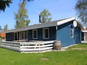 Ferienhaus Birkemosehus (J332)