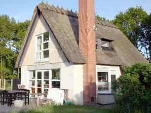 Ferienhaus Bos Hus (K69)