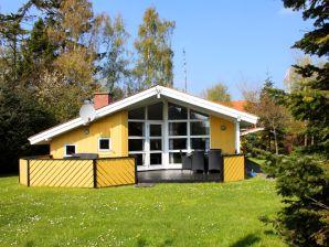 Ferienhaus Bøgfinkehus (L321)