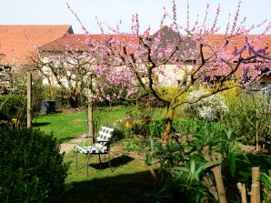 """Ferienwohnung """"Zum Maulbeerbaum"""" im Haus Naturgarten (EG)"""
