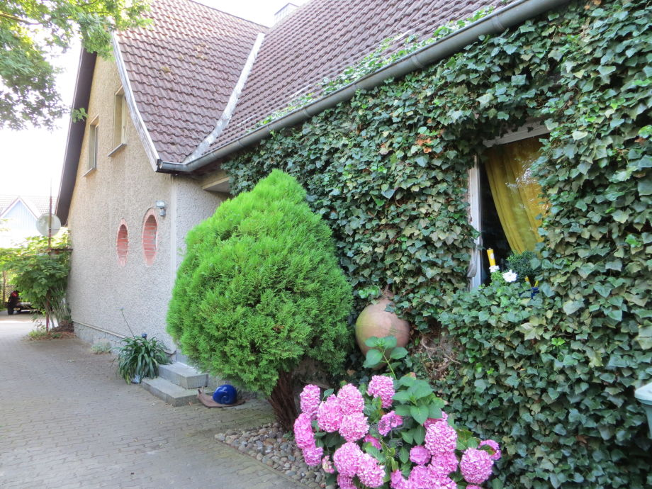 Hortensienhaus