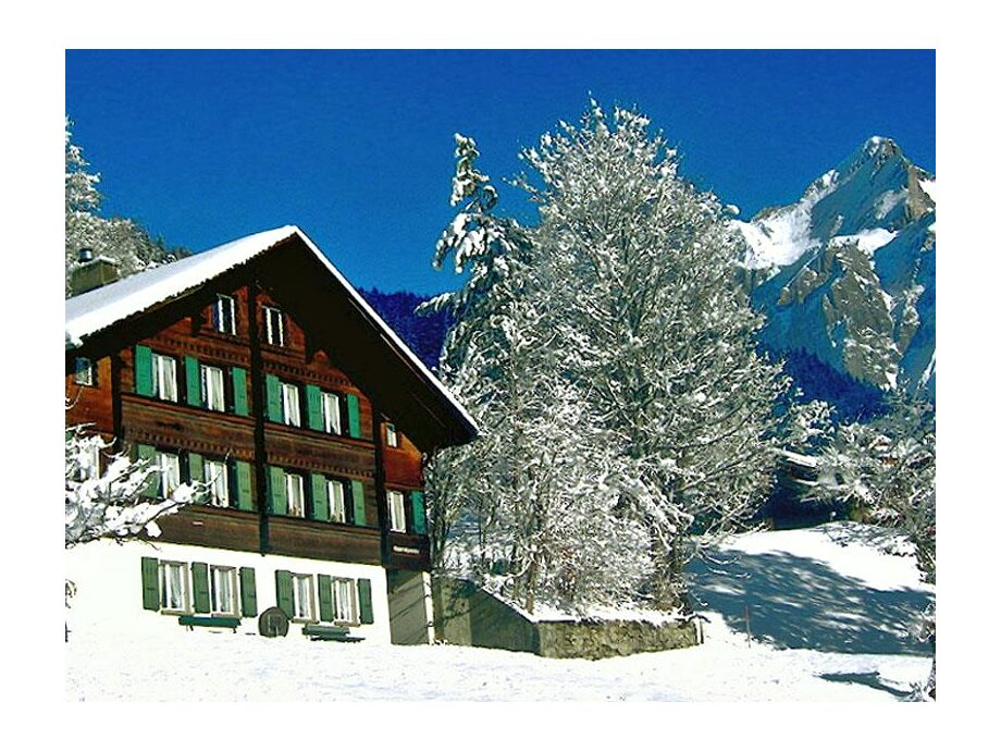 Alpenruhe im Winter