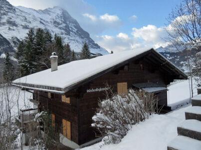 Grindelwaldgletscher (Obj. GRIWA4008)
