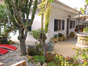 Ferienhaus Cactus | ID 44221