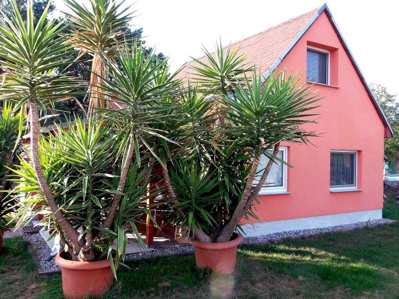 Ferienhaus Havelblick mit Boot und Wasserzugang