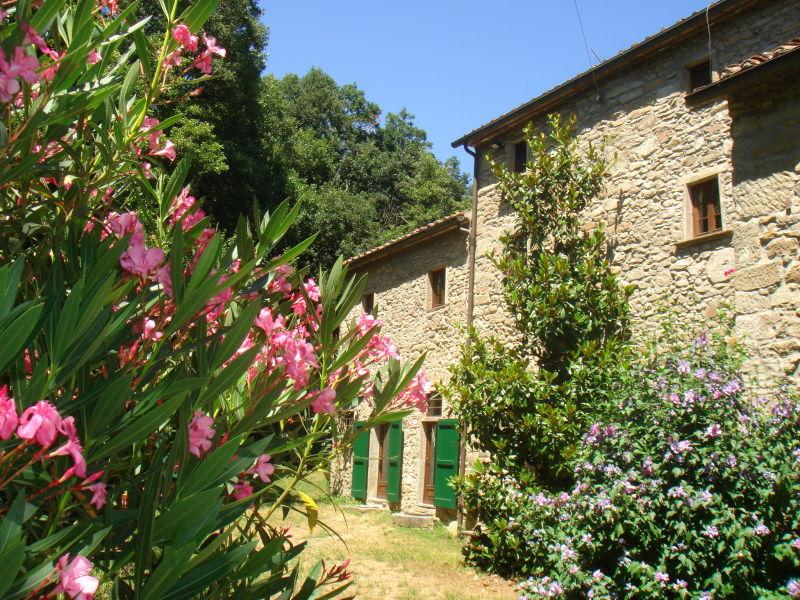 Ferienwohnung Mühle am Bach