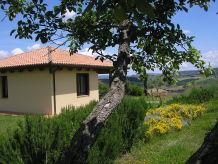 Ferienhaus Oliveto