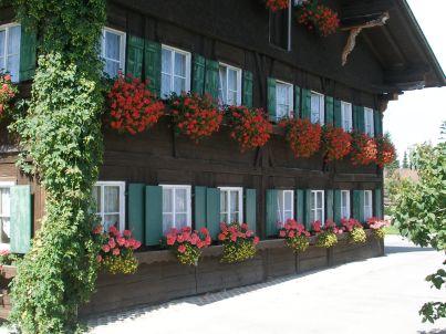 Rosenhof-Allgäu