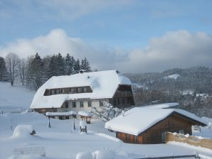 """Holiday apartment """"Widercherie"""" with beautiful distant view"""