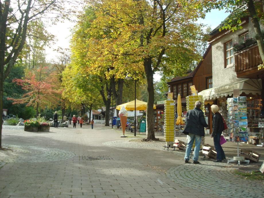 Activiteitenweer Bad Harzburg