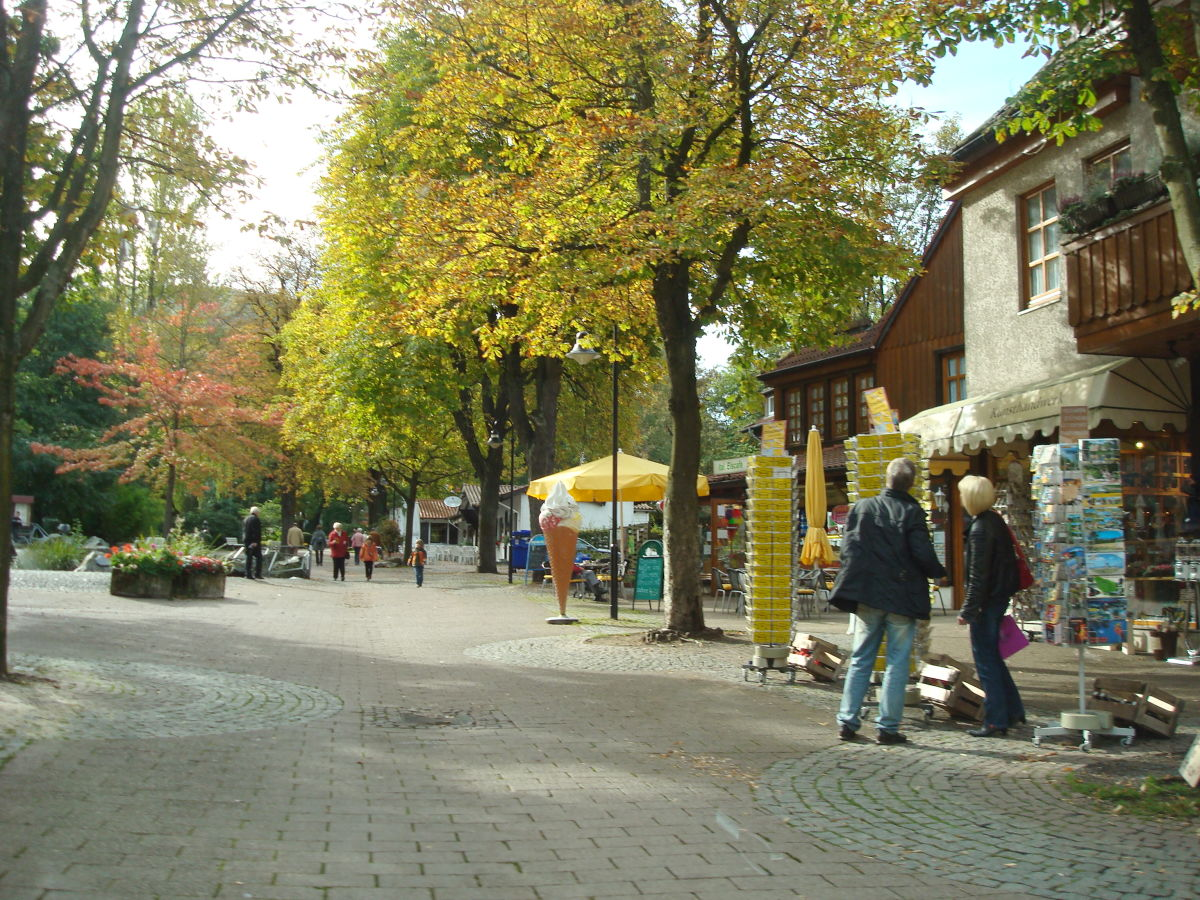 Bordell Bad Harzburg